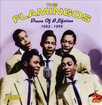 FLAMINGOS - Dream Of A Lifetime..