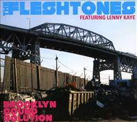 FLESHTONES - Brooklyn Sound Solution Single