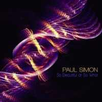 SIMON, PAUL - So Beautiful Or So What Album